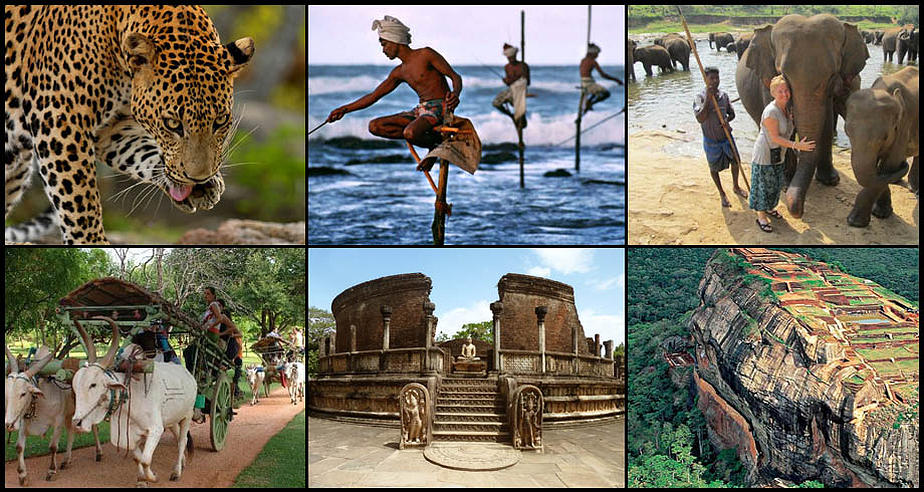 Explore Sri Lanka Tour (11 Nights / 12 Days)